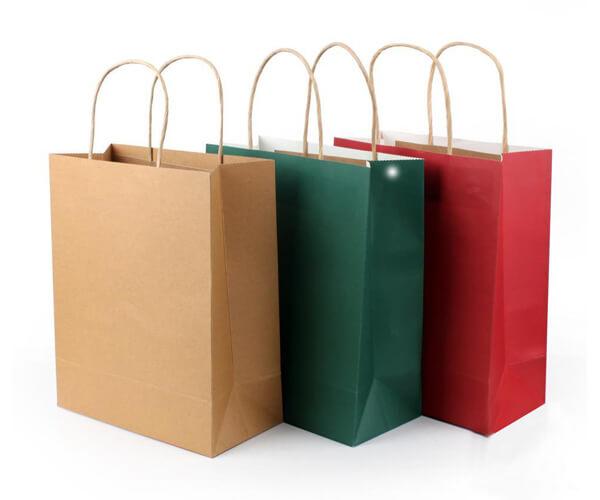 Paper Handle Bags 5