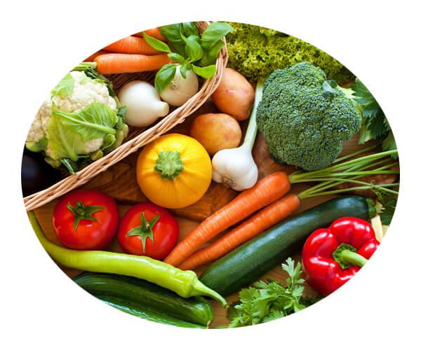 vegetable industries 4