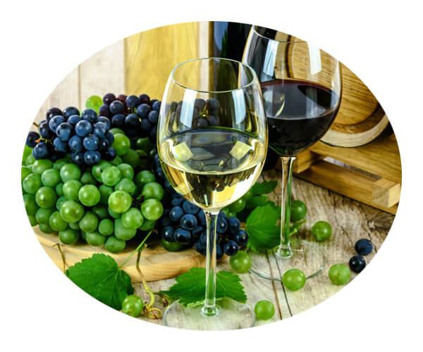 wine application 1