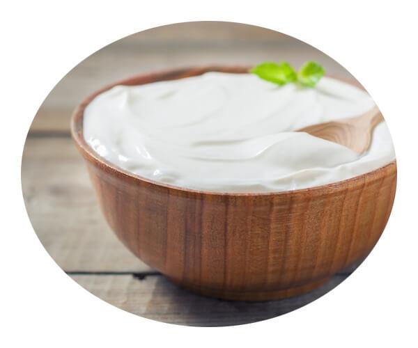 yogurt application 3